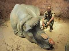Sonderausstellung TOT wie ein DODO_Nashorn
