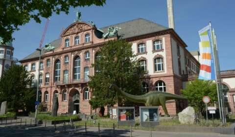 Außenansicht Museum Frankfurt